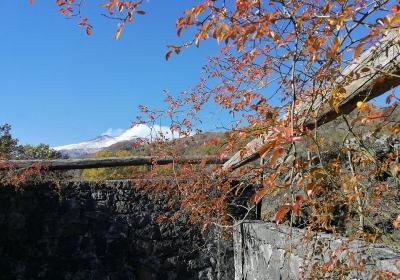 Agriturismo Dimora storica Viola Nel Parco